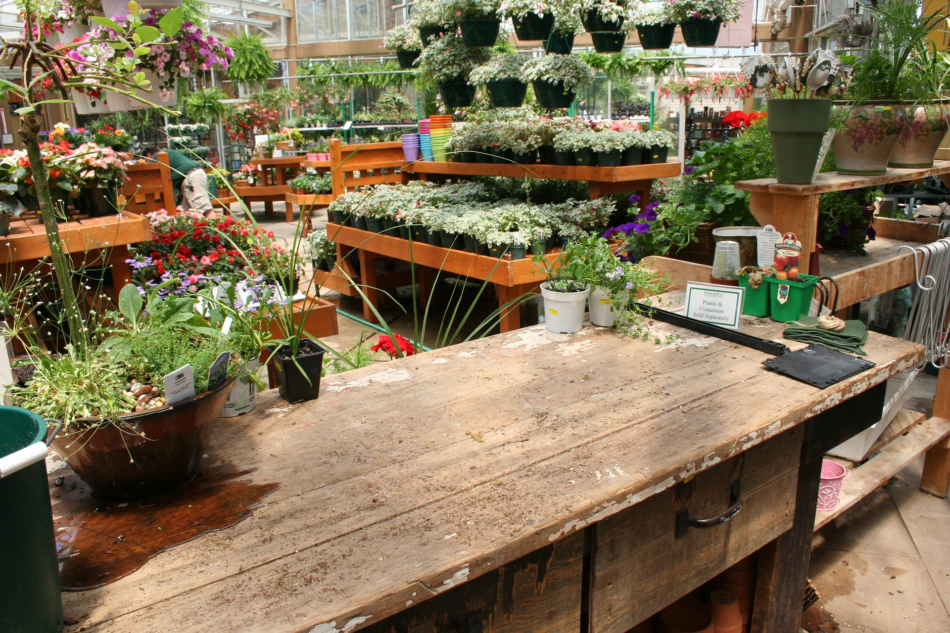 budget friendly options at garden center counter